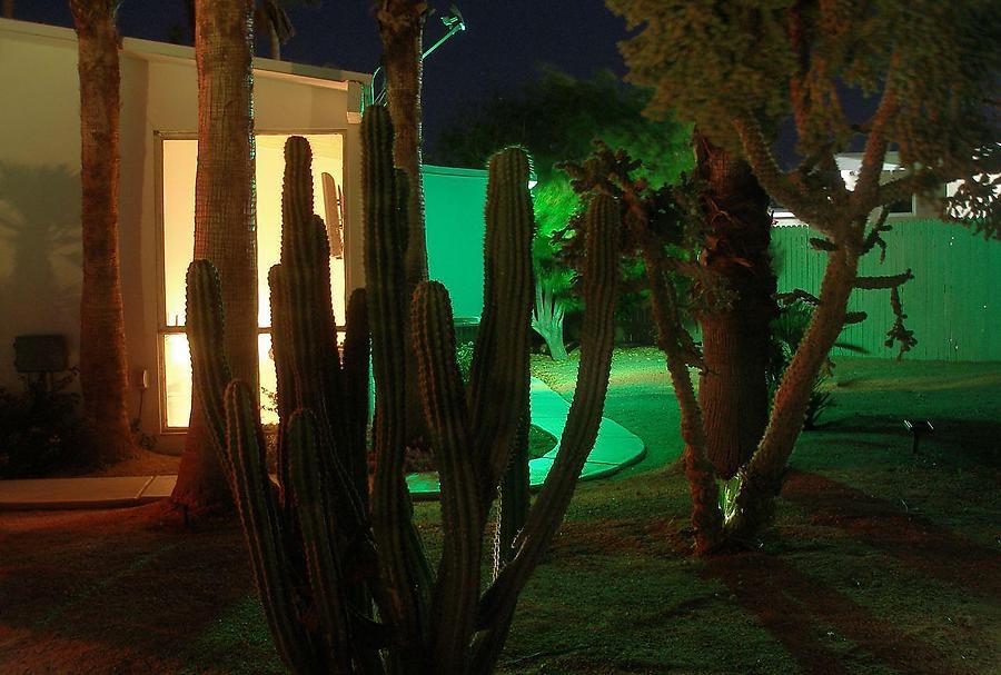 Les-Folles-nuits-de-Palm-Springs_8_defaultbody