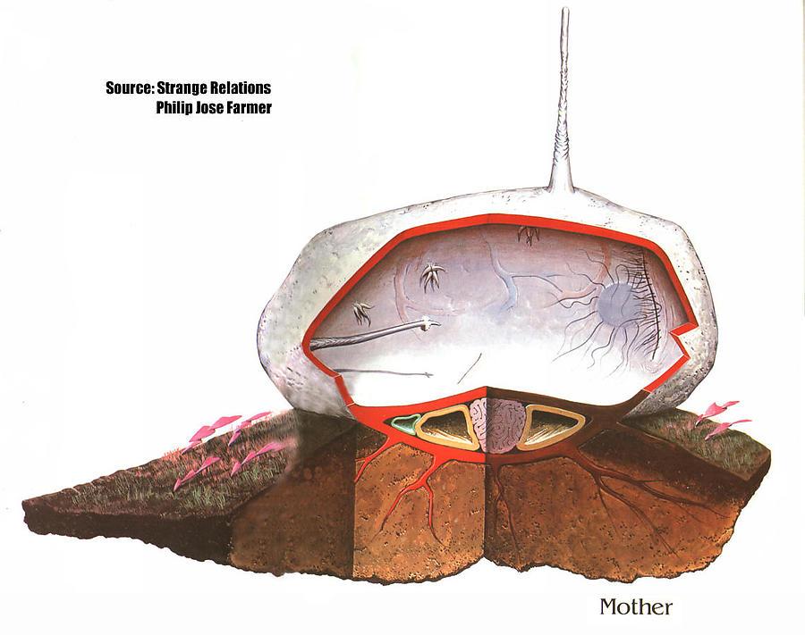 Barlowe-s-Guide-to-Extraterrestrials-2_defaultbody