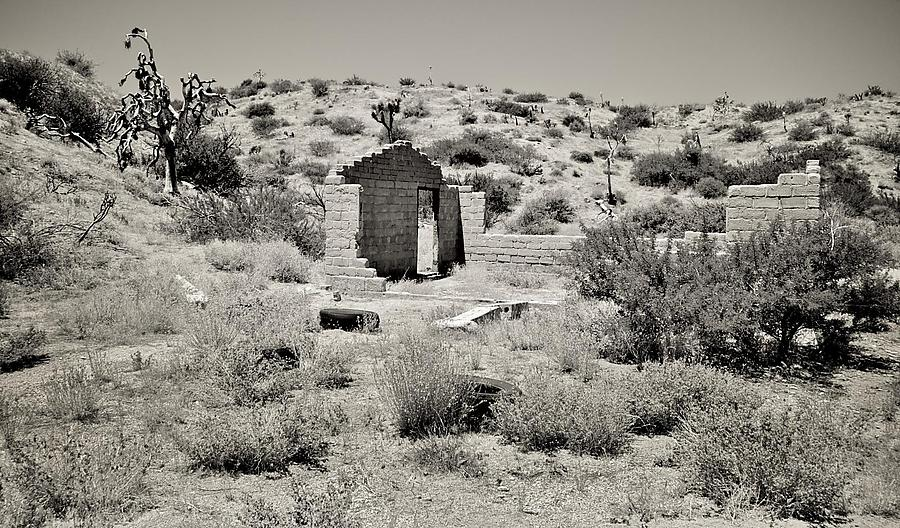 Desert_4_defaultbody