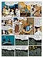 FREDDY-LOMBARD-T2-ID35845-IBD-11_original_thumb2