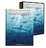 Carthago_Coffret_Album_46520_nouveaute