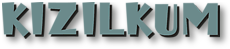 Kizilkum-fond-blanc_worklogo