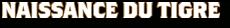 Naissance_Tigre_Logo_FC_51645_worklogo